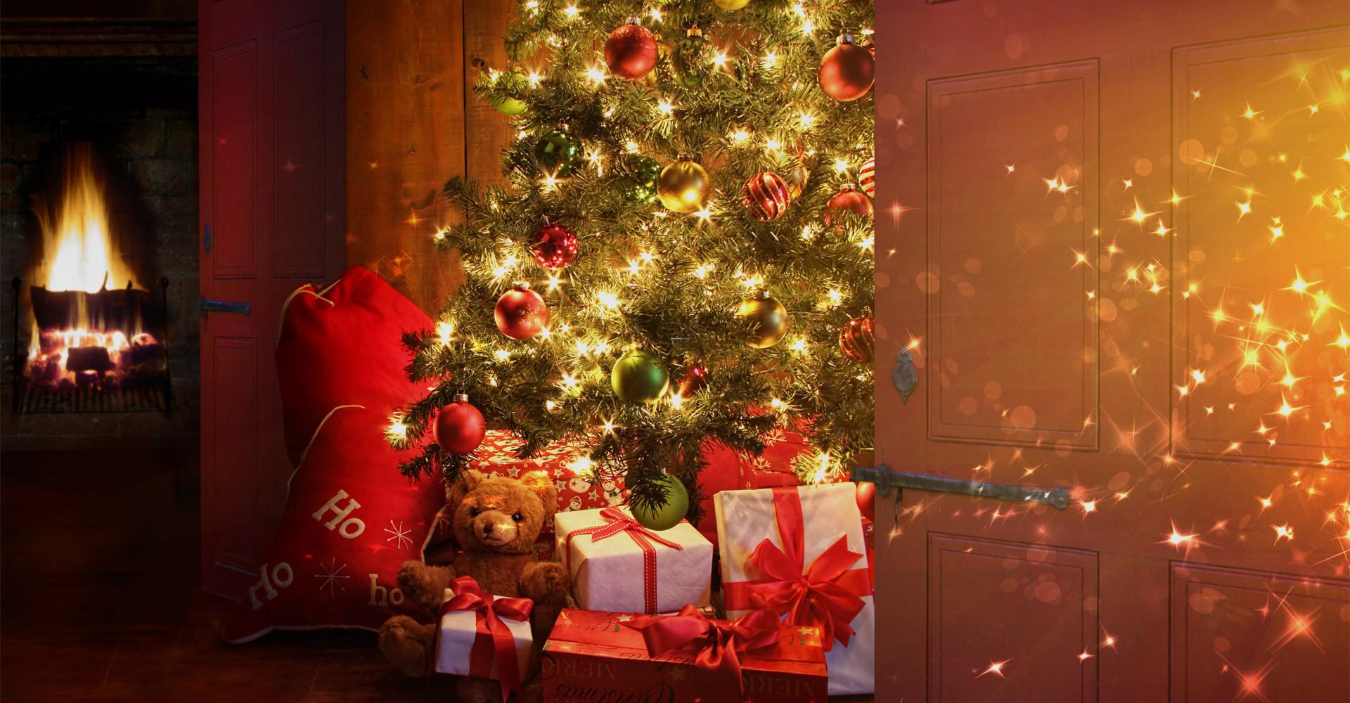 De mooiste Nordmann Excellent kerstbomen in Sassenheim vanaf € 15,-