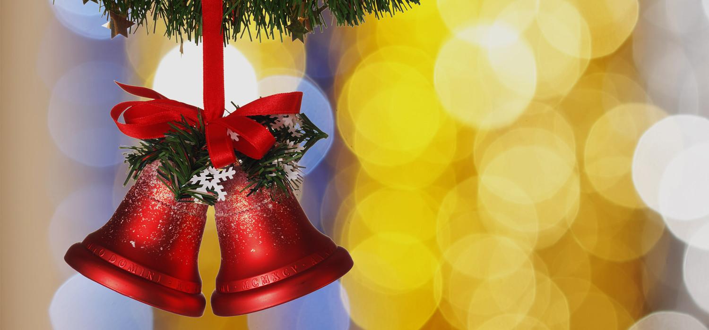 Veelgestelde vragen over Nordmann Excellent kerstbomen in Sassenheim