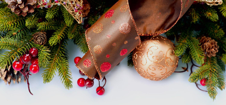 Nordmann Kerstboom Prijzen 2019 In Sassenheim